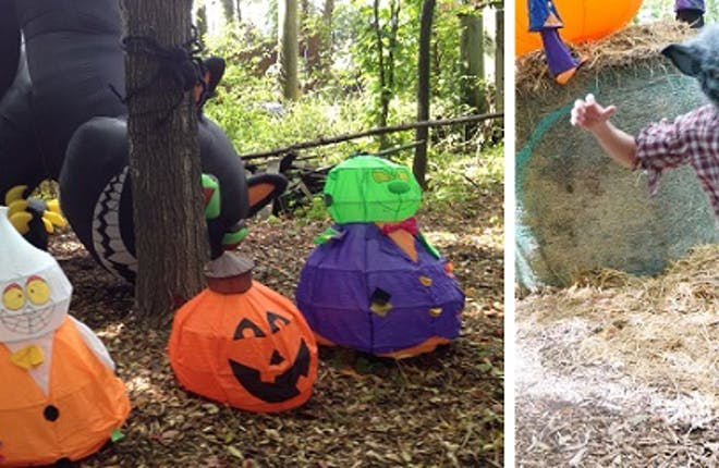 A Visit to Pumpkinland at Whittamore's Farm