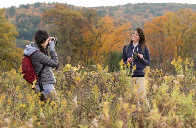 The Best Fall Colour Hikes in York Durham Headwaters