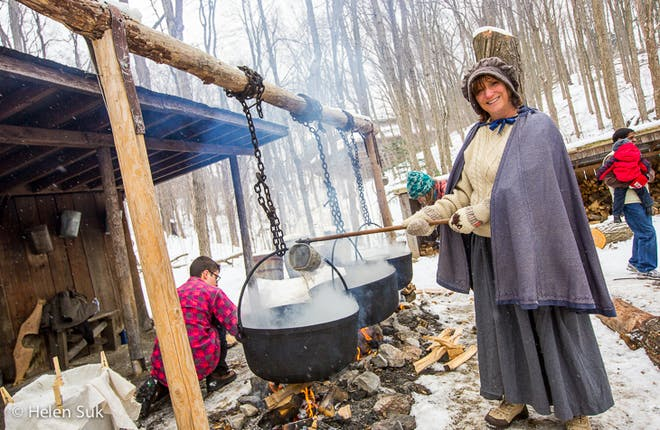 Guest Blog: Join the Sugarbush Maple Syrup Festival at the Kortright Centre