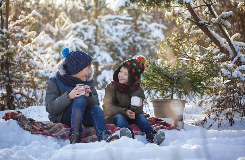 O' Christmas Tree: Welcome to Elliott Tree Farm