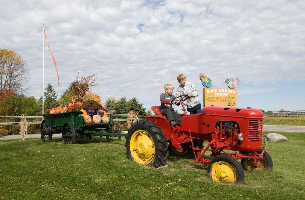 Farm Fresh Foliage & Fun