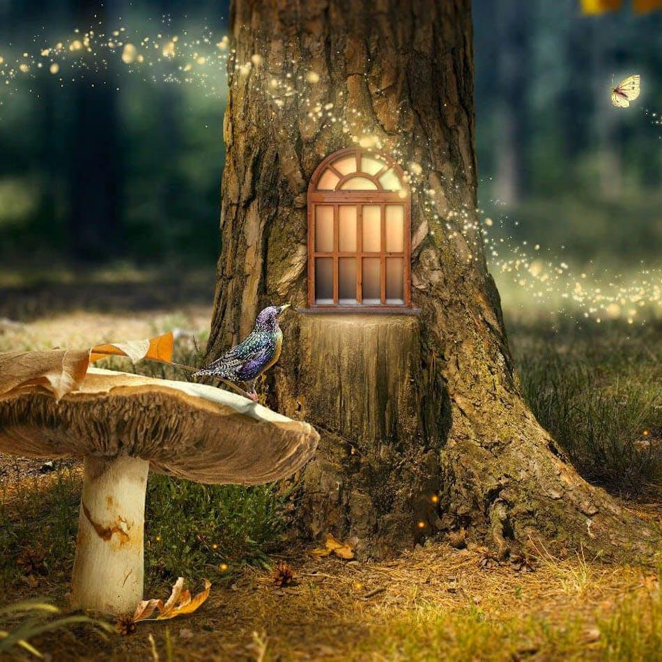 Pickering Fairy Tours