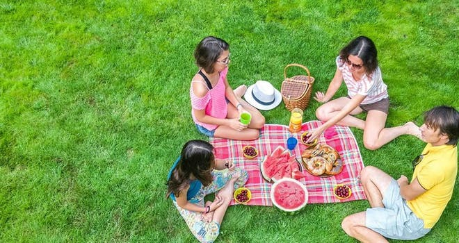 Picnicking in Newmarket