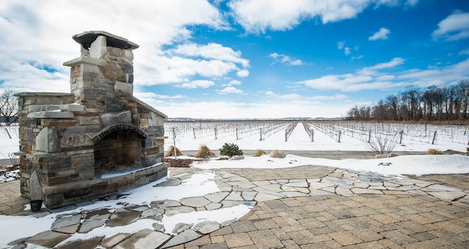 All About Ice Wine with Holland Marsh Wineries