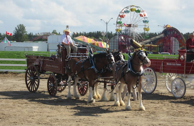 Orangeville Celebrates Old and New at the Fair