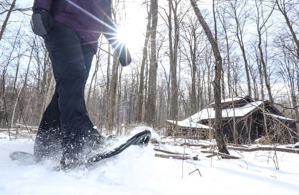 A Short History of Snowshoeing in Canada