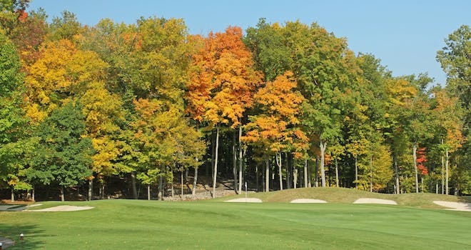 Fairways & Fall Colours