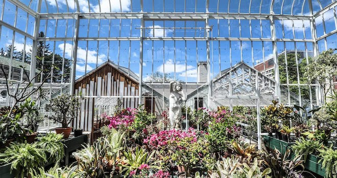History in Bloom: The Gardens of Parkwood Estate