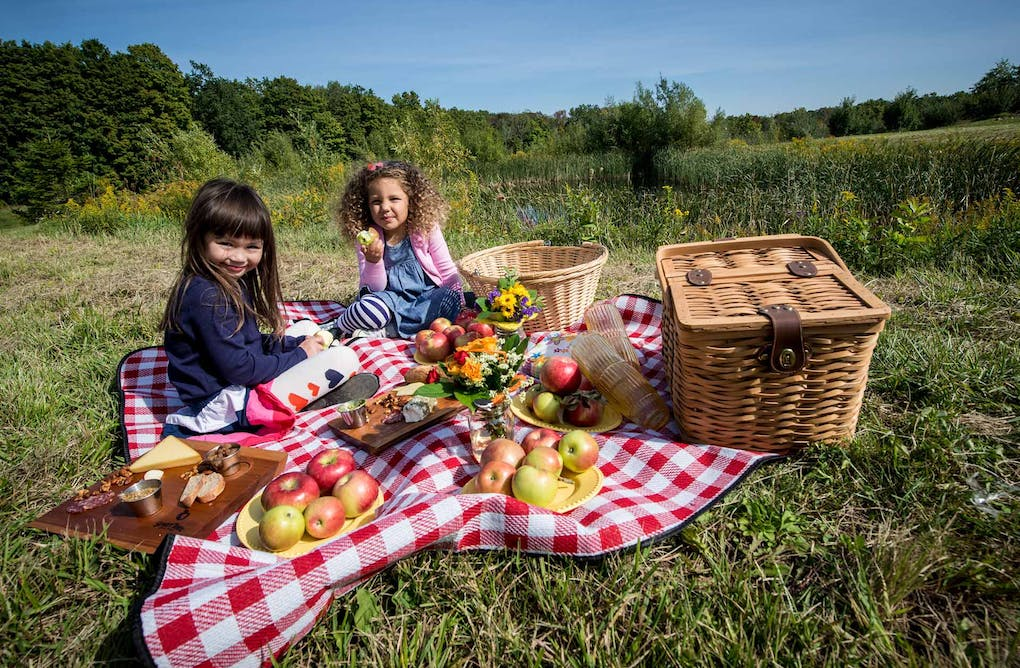 Pop-up Picnic in Headwaters