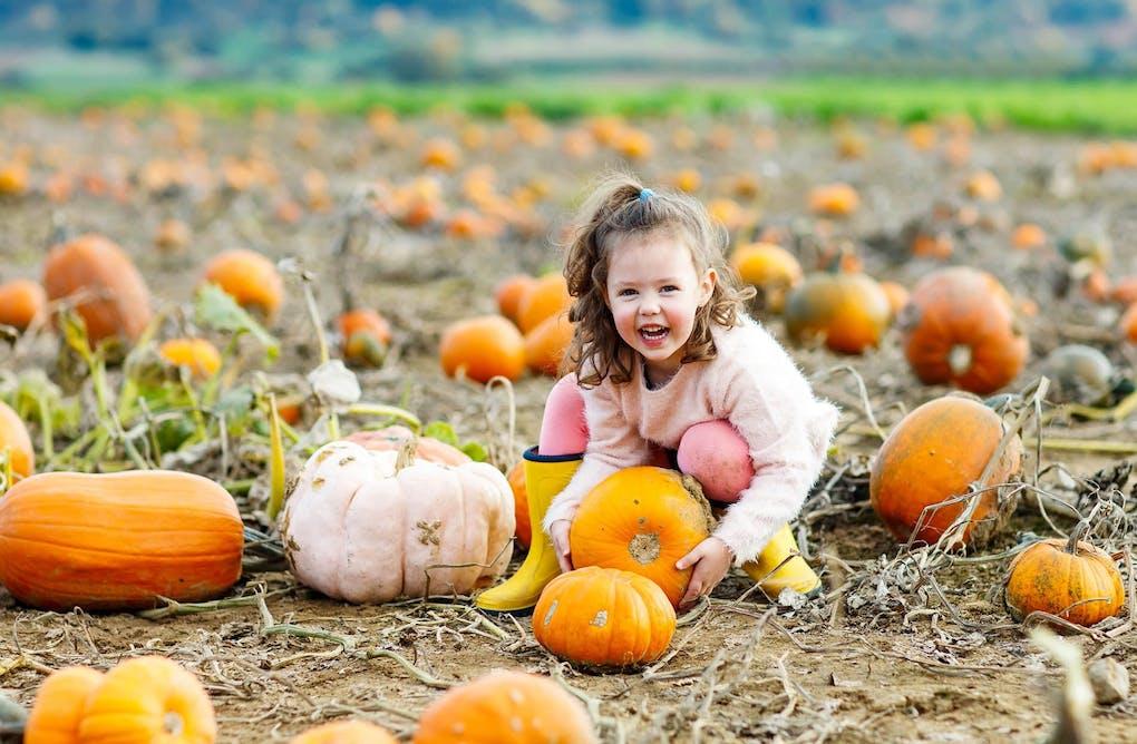 Farmyard Fun at the Pick-Your-Own Pumpkin Patch