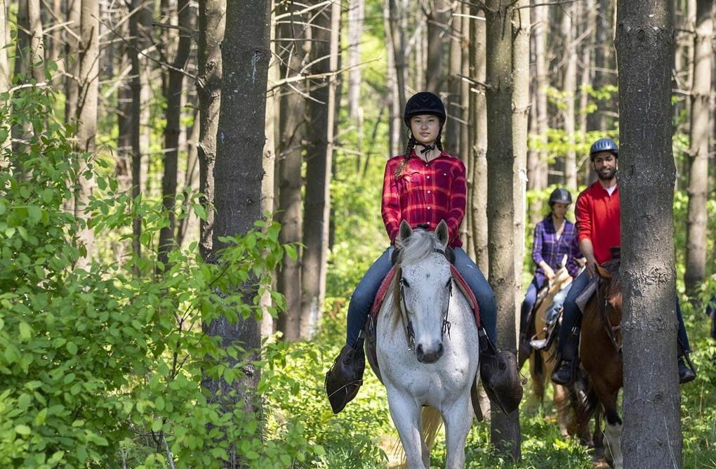 Top Five Things to Do in Headwaters This Summer