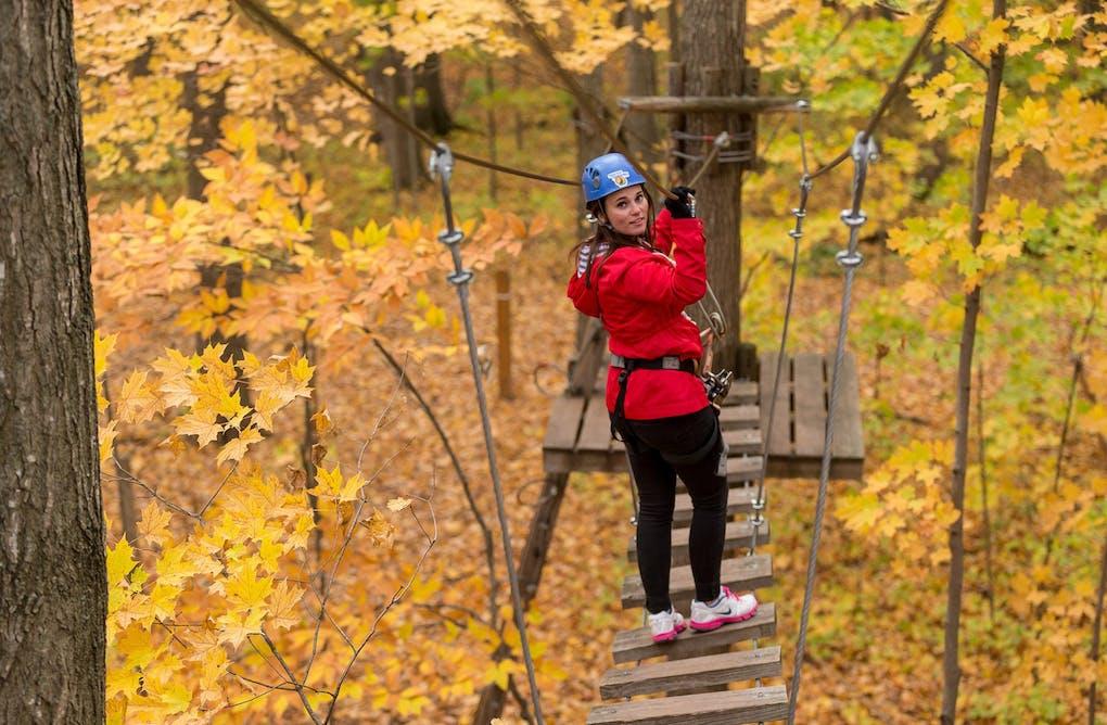 Make Like a Tree at Treetop Trekking