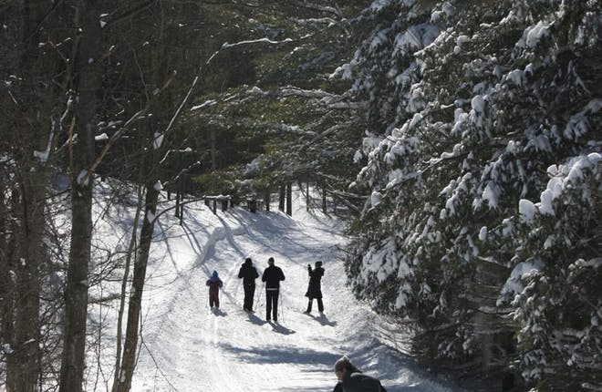 Kid-Friendly Winter Fun: Cross Country Skiing at Dagmar