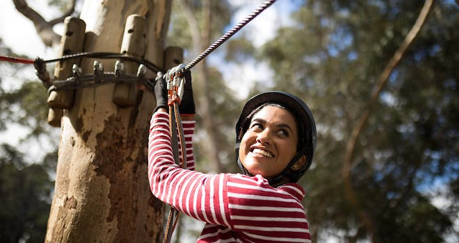 Fall at Treetop Eco-Adventure Park (…Pun Intended)