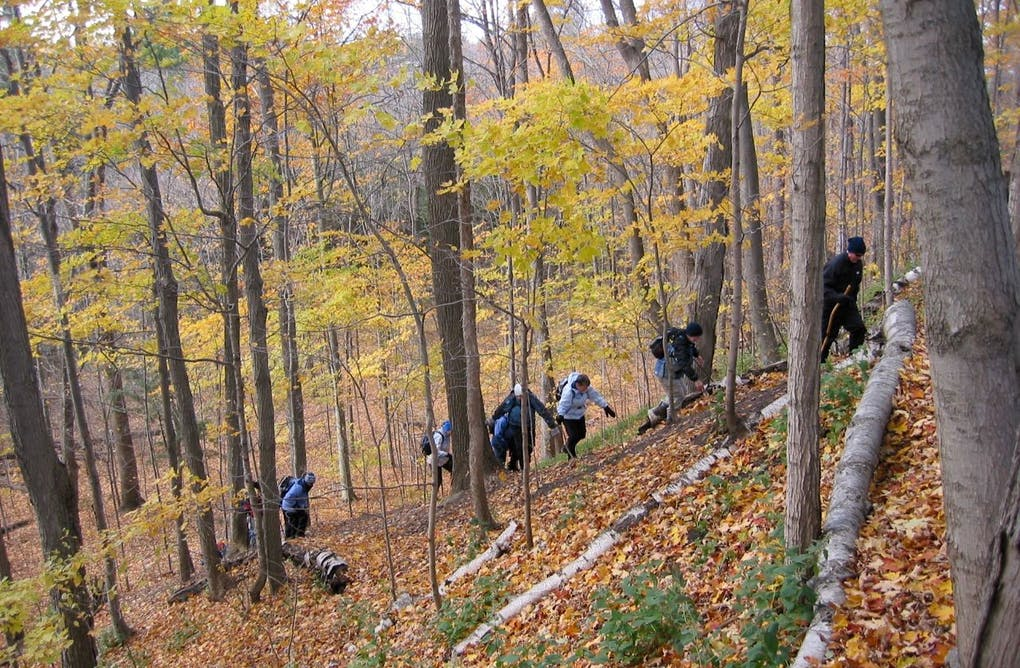 How to Stay Safe While Hiking in Fall