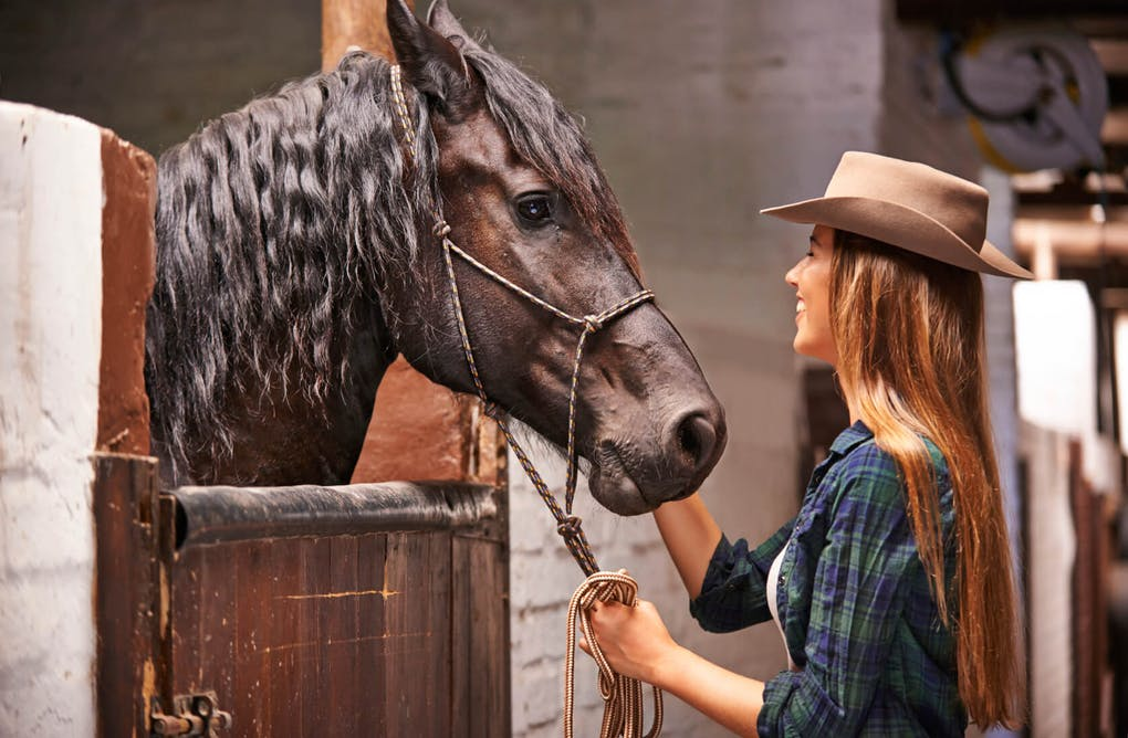 Horseback Riding Adventures