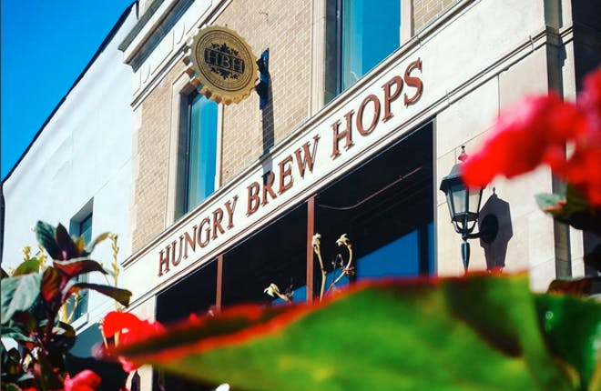 Big Red Visits Hungry Brew Hops in Newmarket