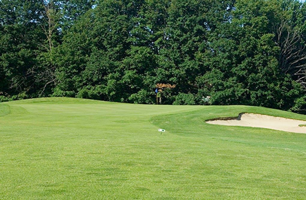 Guest Blog: Maples of Ballantrae Golf Club – Rewarding the Wise Shot Maker