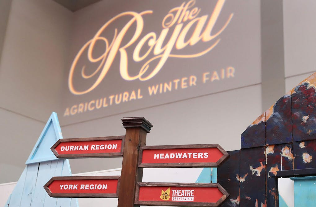 Meet Us at The Royal! All About The Royal Agricultural Winter Fair 2020