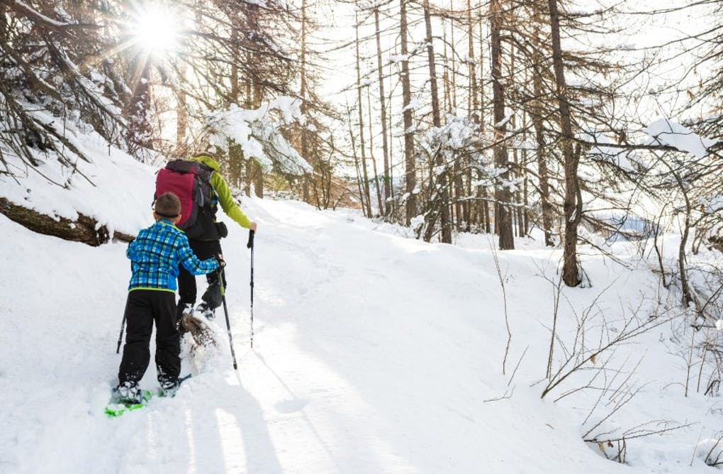 All About Snowshoeing